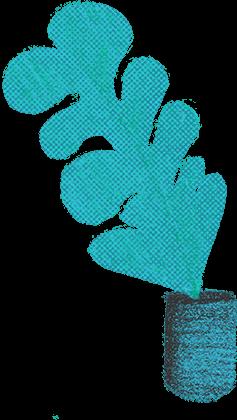 planta02